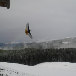 10 - Volando nel bianco